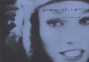 1997 PRINCESS Flyer gandy 1